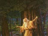 Заклинания и ритуалы друидов