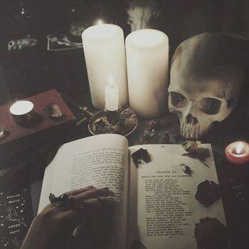 Книга и череп
