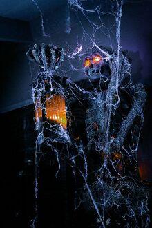 Скелет в паутине