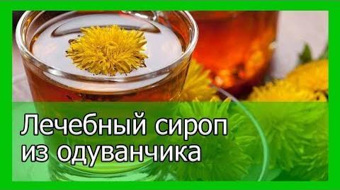 Лечебный сироп из одуванчика