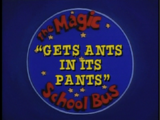 Gets Ants in Its Pants