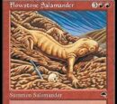 Salamandra Mutaroccia (Flowstone Salamander)