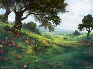 Fields of SummerART1