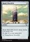 Basalt MonolithC15