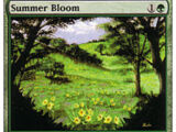 Fioritura Estiva (Summer Bloom)
