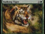 Tigre in Agguato (Stalking Tiger)