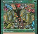 Vigna di Eladamri (Eladamri's Vineyard)