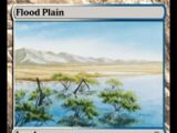 Pianura Alluvionale (Flood Plain)
