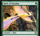 Uccelli del Paradiso (Birds of Paradise)