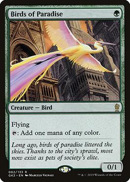 Birds of ParadiseGK