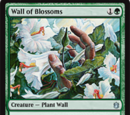 Muro di Bocciuoli (Wall of Blossoms)