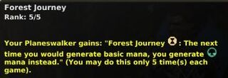 Forest-journey-5