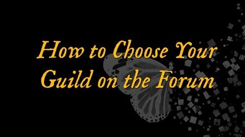 How to Choose Your Guild on the Forum