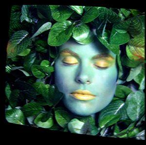 MagicQuest green leaf lady