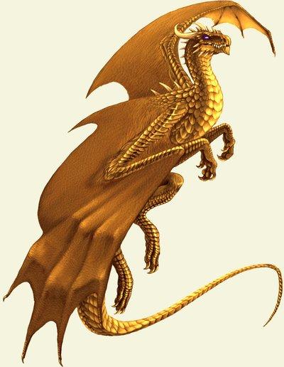 Gold Torveus Dragon   Magistream Wiki   FANDOM powered by Wikia