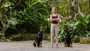 Juliet Higgins (2018) with the dogs