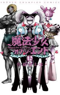 Cover Jap 12