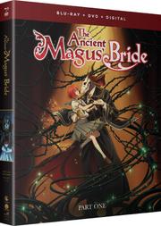 Blu-ray DVD Como Part 1