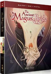 Blu-ray DVD Como Part 2
