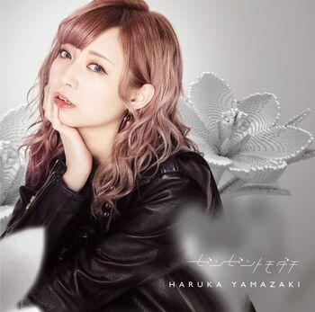CD + DVD Cover