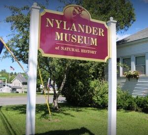 M nylander