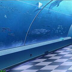 Aquaria(popular dating spot)