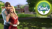 Sims vzor