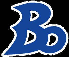 Blue Oceans logo