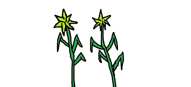 File:Sticker plants.png