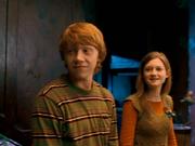 Ginny5rv2