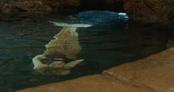 Rita underwater