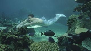File:ZacSwimming.jpg