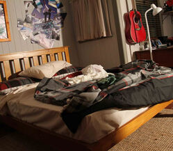 Zac's Bed