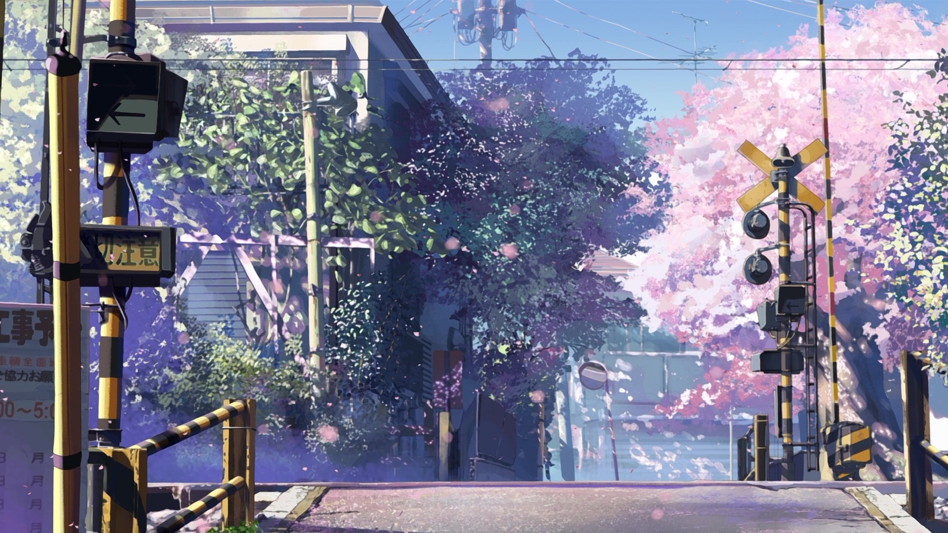 Timeline in 5 Centimeters per ...