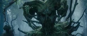 TreeWarrior 1