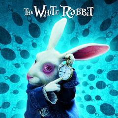 White Rabbit poster.