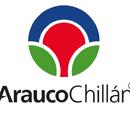 Arauco Chillán