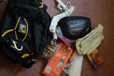What's in my (Ditch) bag