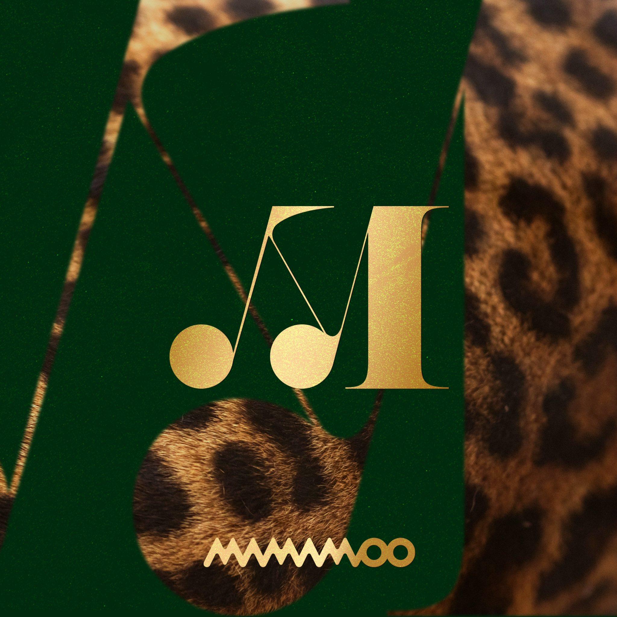 TRAVEL | MAMAMOO Wiki | Fandom