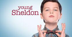 Young Sheldon Profile