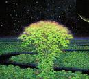 Tree of Mana