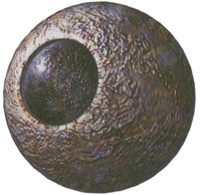 AF Stone Eye (LoM Artwork)