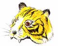TigerCap