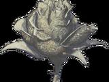 Sand Rose