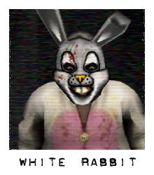 File:Whiterabbit.jpg