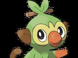Balloon Toad