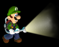 Luigismansion3000