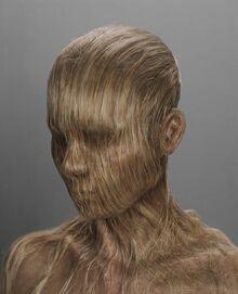 Hairymary1
