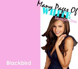 Blackbird MPOWPromoPhoto