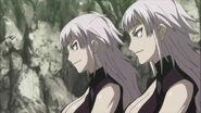 MAS twins